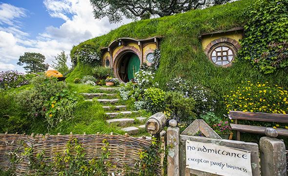 New Zealand's Top Instagramable Road Trip Destinations