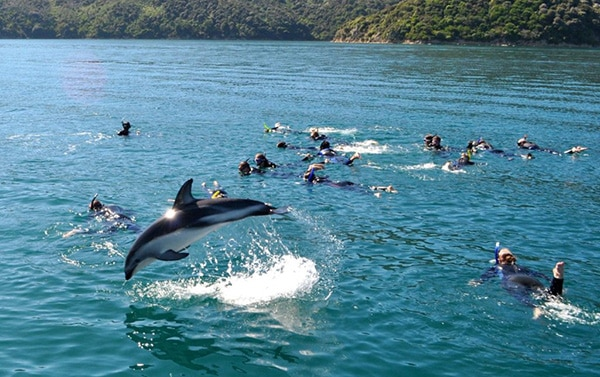 5 Adventurous things to do in New Zealand