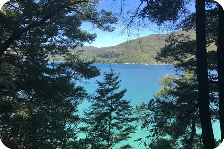 Marlborough-Sounds-new-zealand
