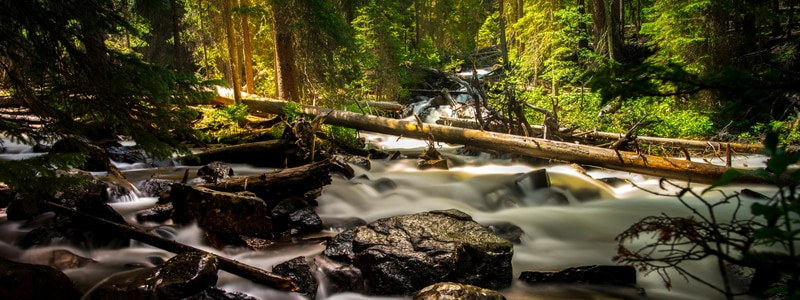 Cascade Creek Fiordland travellers autobarn