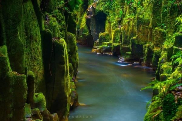 Te Urewera New Zealand