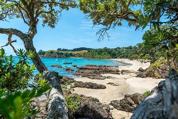 POUKARAKA FLATS CAMPGROUND, WAIHEKE ISLAND