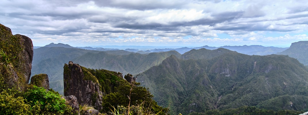 Pinnacles Track North Island New Zealand Best Hikes