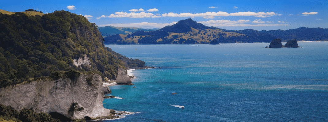 Coromandel Coastal Walk, Port Charles