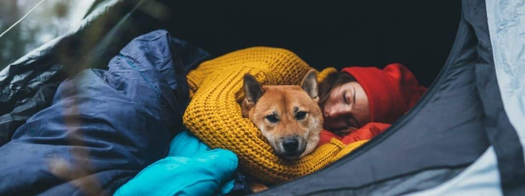woman sleeping with dog in tent