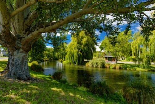 canals in christchurch